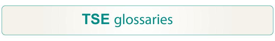 kontsultak-tse_glosategiak-ingles